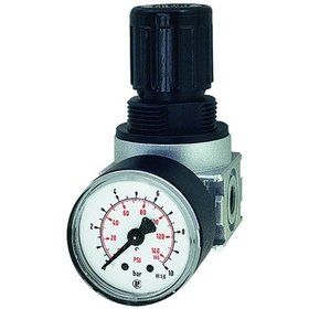 RIEGLER® - Druckregler multifix-mini Manometer G1/8Zoll 0,2-6bar